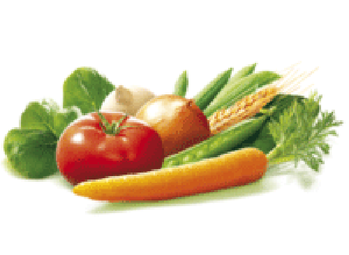 """Fruits et Légumes - """"la Fraîcheur"""""""